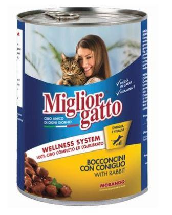 Miglior Gatto Yaş Kedi Maması